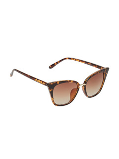 The Wild Funk Cat Eye Sunglasses